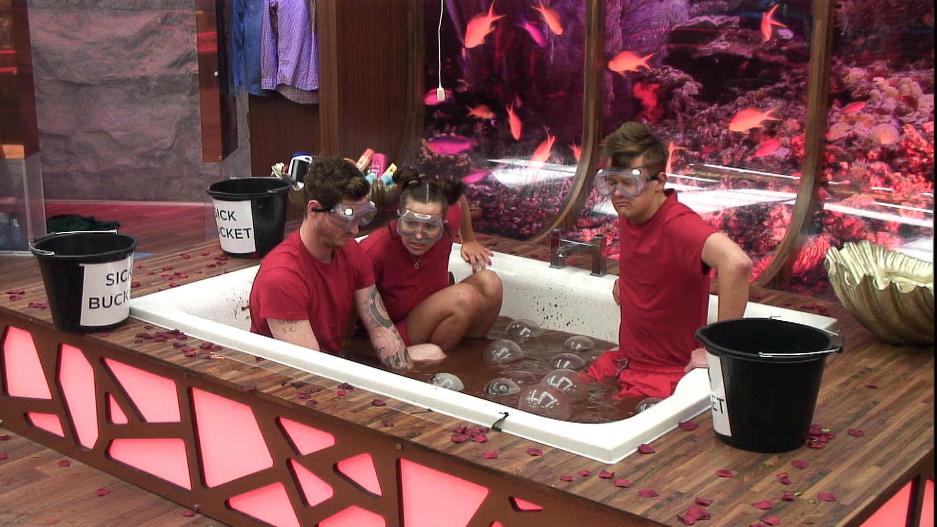 Day 30: Housemates take part in first day of The Zone task
